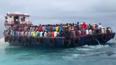 Photo of Nearly 300 illegal migrants rescued