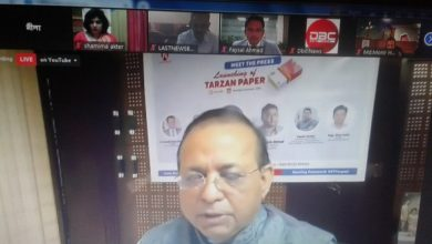 Photo of Export-oriented Tarzan paper launched