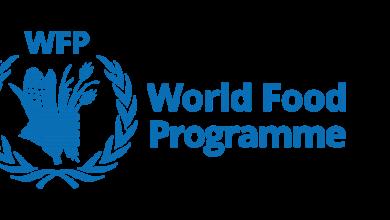 Photo of UN ups food aid to Ethiopia