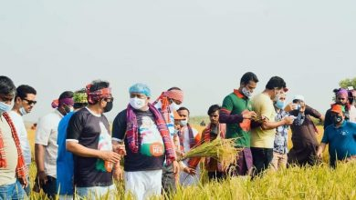 Photo of Swechasebak League cooperates in harvesting
