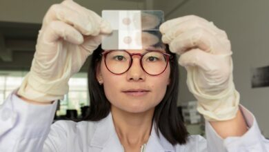 Photo of China certified malaria-free