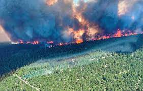 Photo of Canadian military on alert as wildfires rage