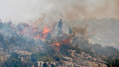 Photo of Syria Executes 24 People for Setting Wildfires